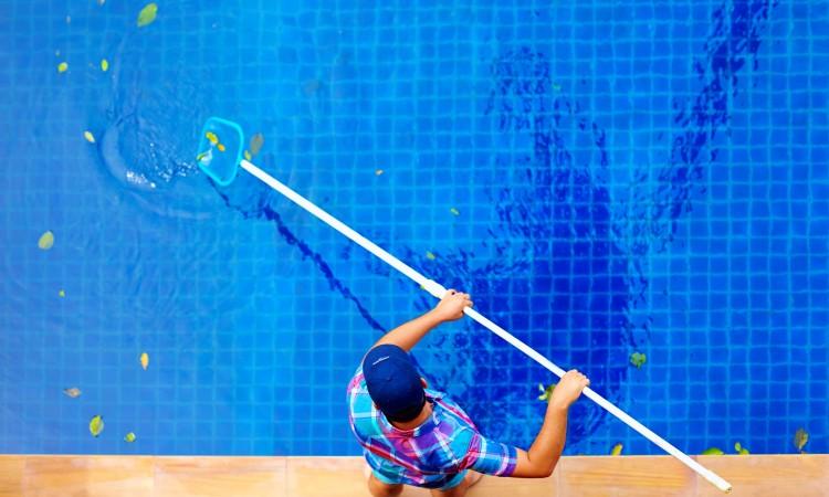 Limpia la piscina