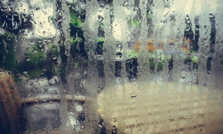 manchas de lluvia
