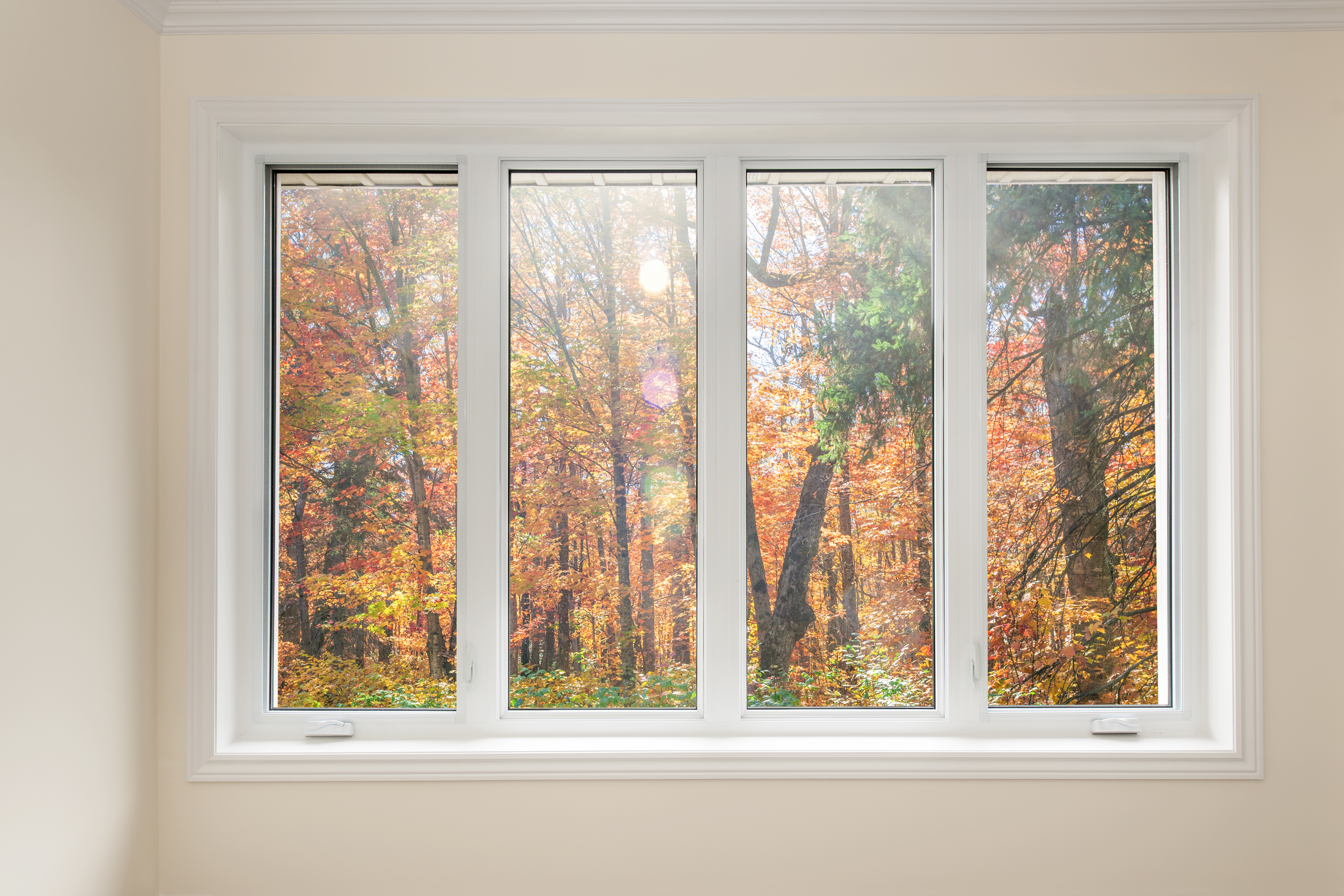 Window with view of autumn forest