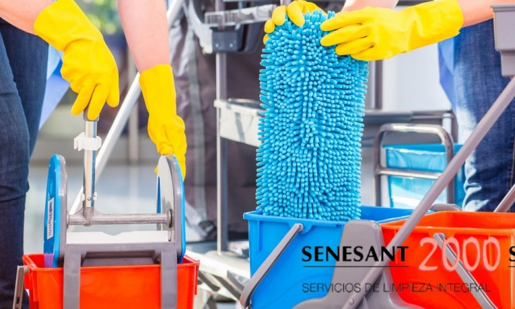 mantenimiento, limpieza, senesant2000