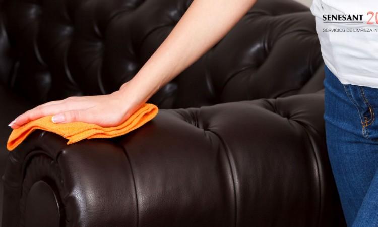 limpieza, sofá, piel, senesant2000